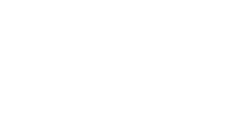 MILLE PAPILLONS WEDDING PLANNER